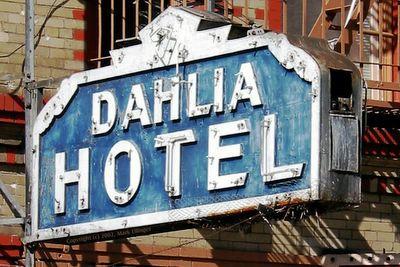 The Dahlia cover.